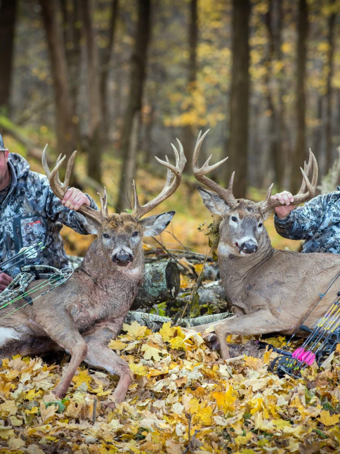 Randy and Riley, Wisconsin Bucks
